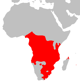 national geographic north america map with Palo Mayombe Is It Afro Cuban Or Is It Now Afro American North And South Of The Americas And The Caribbean on Shaded Relief Sea besides Map further American Bullfrog as well Rivers Lakes additionally Walking In Menorca.